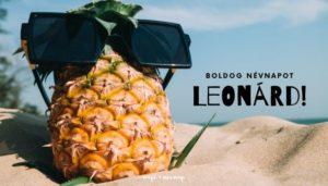 Leonárd névnap üdvözlő borító