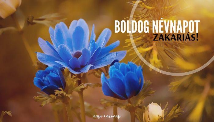 Zakariás névnap üdvözlő borító