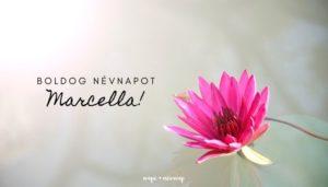 Marcella név üdvözlő borító