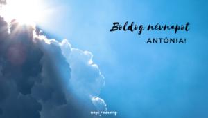 Antónia név üdvözlő borító