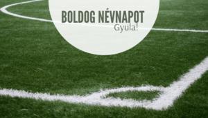 Gyula név üdvözlő borító
