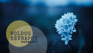 Herbert név üdvözlő borító