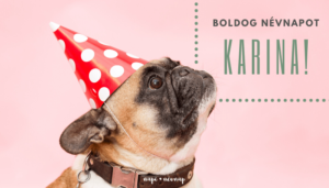 Karina név üdvözlő borító