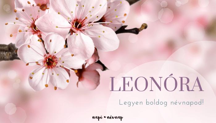 Leonóra név üdvözlő borító