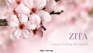 Zita név üdvözlő borító