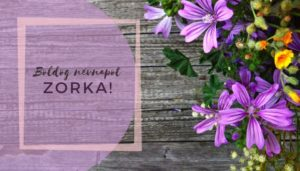 Zorka név üdvözlő borító