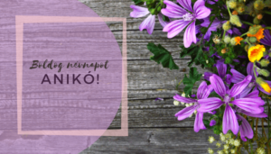 Anikó név üdvözlő borító