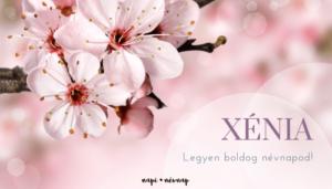 Xénia név üdvözlő borító
