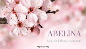 Abelina név üdvözlő borító