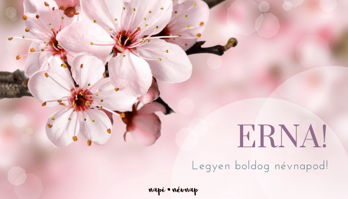 Erna név üdvözlő borító
