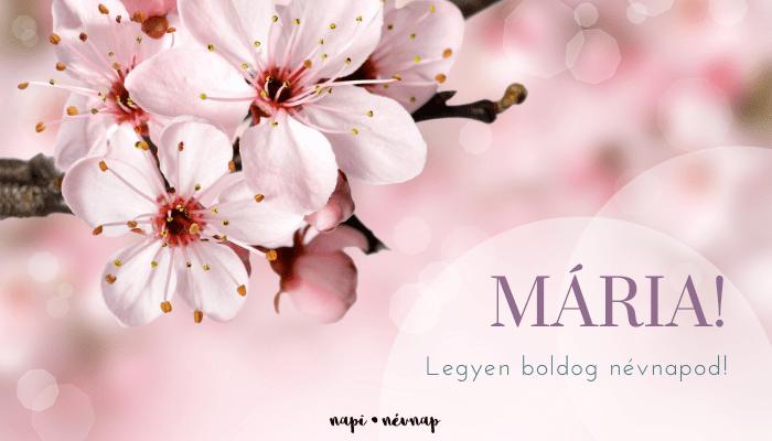 Mária név üdvözlő borító