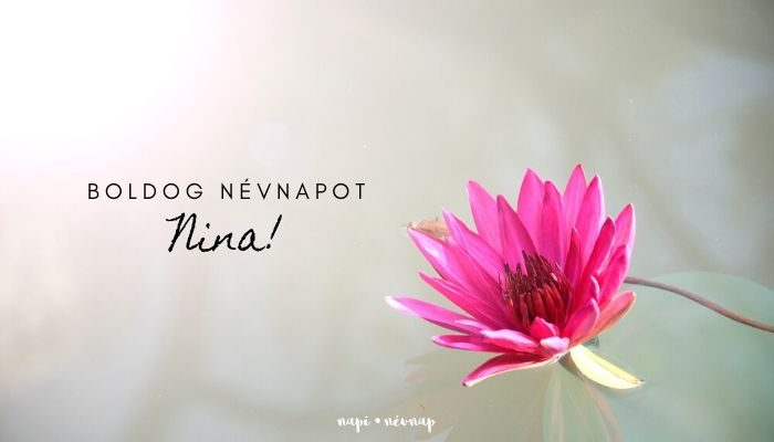 Nina név üdvözlő borító